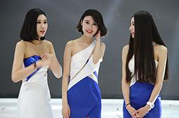 北京车展禁模之后