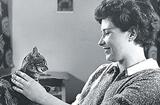 一辈子与猫相知共处