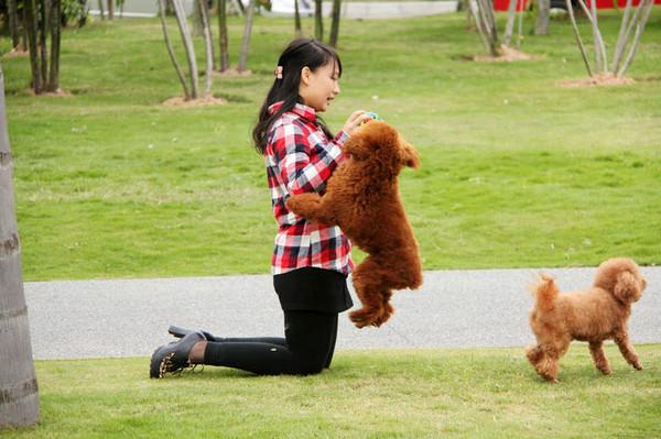 2013年1月3日 深圳红树林生态公园   浏览 3132 次   我