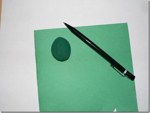 小乌龟没用到扭扭棒,是把核桃壳放在一张绿色彩纸上