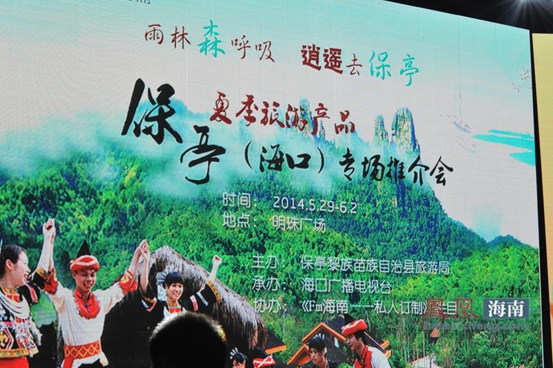 市场,保亭县旅游局搭建保亭县旅游企业夏季营销推广