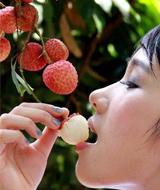养生:荔枝的健康吃法
