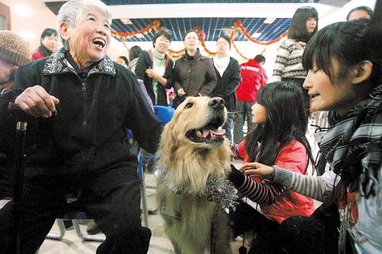 """來訪的狗""""客人""""和志願者讓福利院的老人很開心 羊城晚報記者林桂炎 攝"""