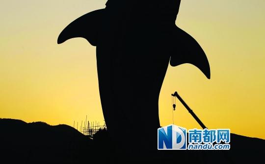 长隆海洋公园标志性建筑鲸鱼雕塑已基本完工.南都记者 陈坤荣 摄-珠
