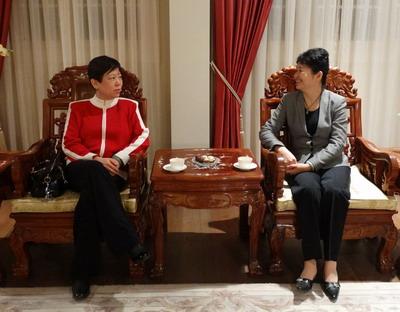 李小林率团访问以色列,1月15日,驻以色列大使高燕平在官邸会见代表团.图片