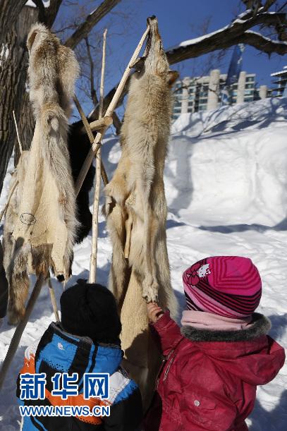 儿童在雅克-卡蒂埃公园看动物皮