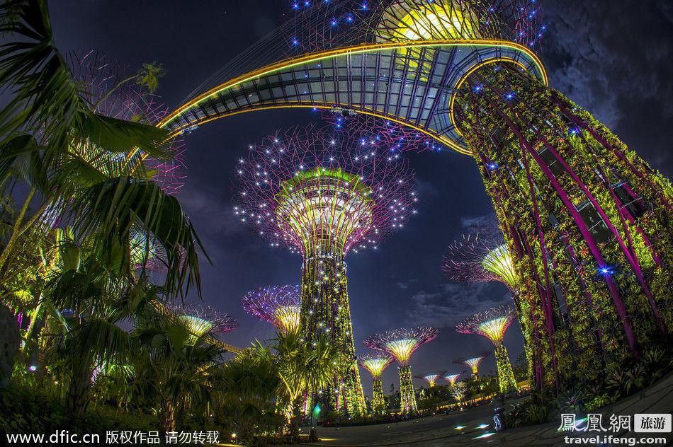 新加坡滨海湾花园新加坡观光新景点滨海湾花园由英国景观事务所