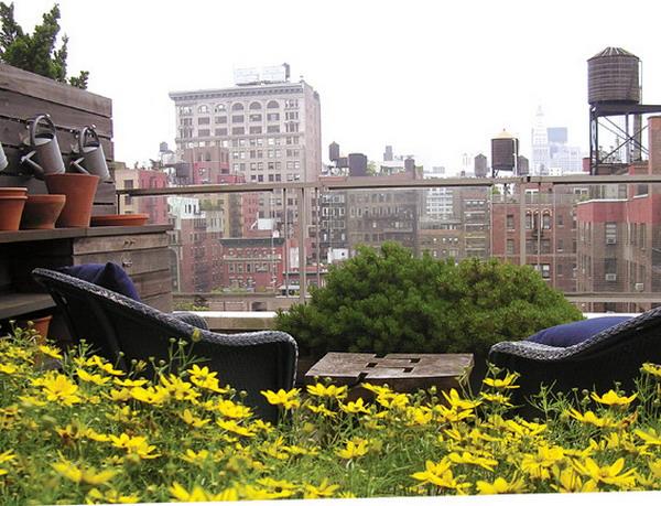 透视:你从什么角度观赏你的花园?从平台、透过窗户还是平地上?是一览无遗还是移步异景?透视改变了观赏花园的方式。