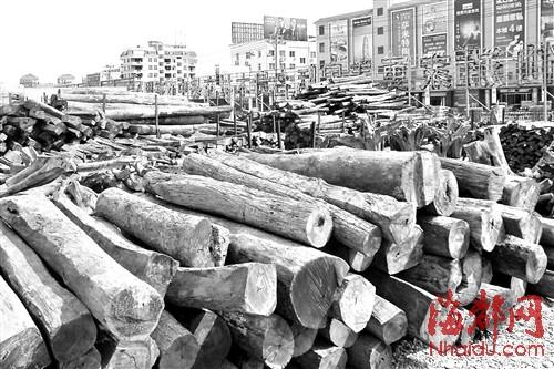 如今仙游的木材市场呈低迷状态,虽然东南亚国家对红木原料出口做出