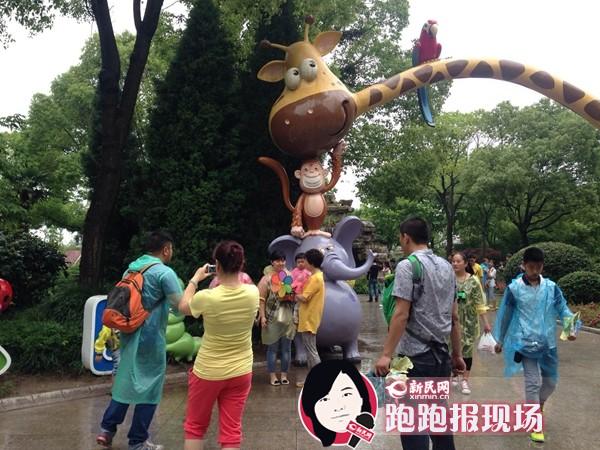 六一去上海野生动物园陪动物宝宝过节