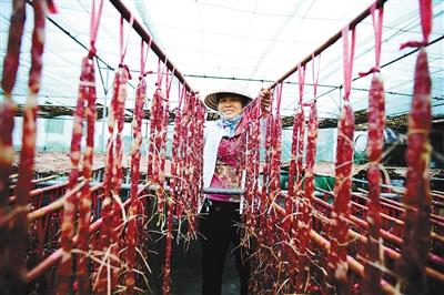 目前,瑞溪镇传统手工制作的牛肉干,腊肠等加工产业已初具规模.