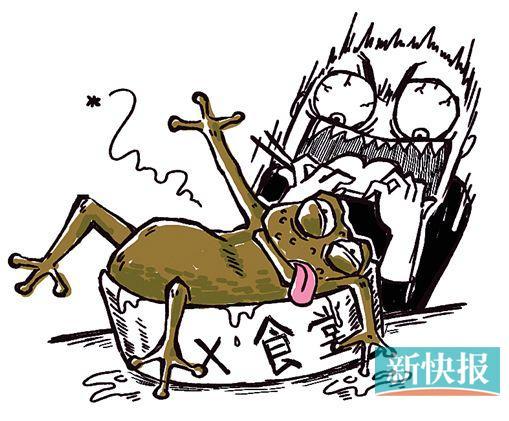 可爱蛤蟆简笔画
