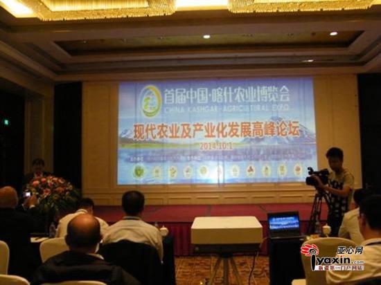 """首届""""中国·喀什农博会""""高峰论坛现场。亚心网记者 黄萍摄"""
