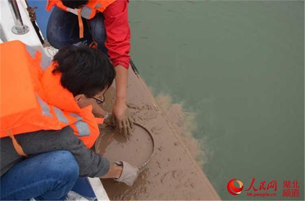 米深的江底底栖动物样品