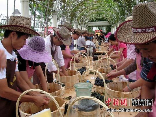草帽diy-张裕酒文化之旅 中国酒庄梦开始的地方