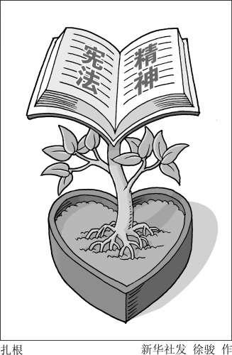宪法漫画大全图片手绘