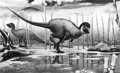 科技小制作恐龙的步骤