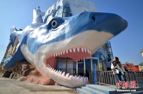 近日,一个巨型鲨鱼雕塑亮相河北省邯郸海洋馆,吸引市民眼球。据了解,该鲨鱼雕塑由玻璃钢制成,长34米,高16米。 中新社发 郝群英 摄 图片来源:CNSPHOTO