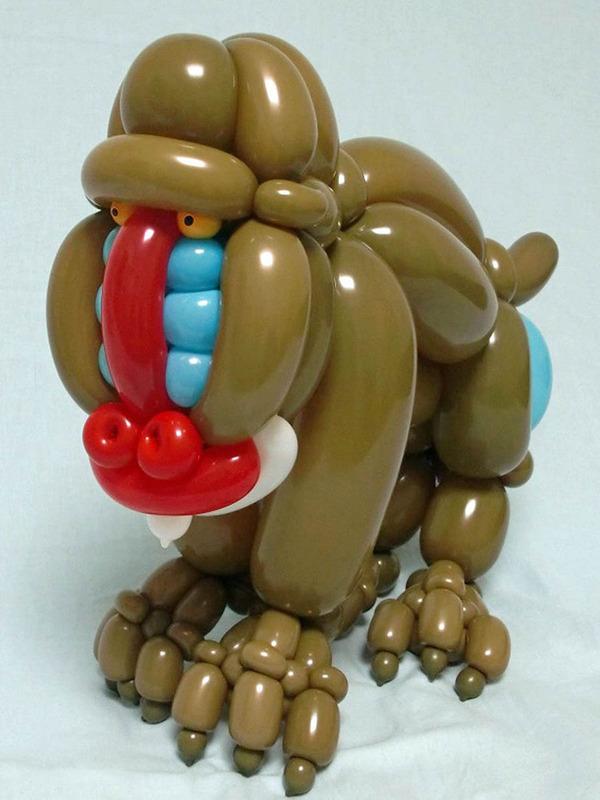 这位现年25岁的日本艺术家痴迷于气球艺术造型创作,令人惊奇的是,他只用普通的气球拧在一起而不用任何粘合剂和其它的材料,就能做出各种栩栩如生的小动物,比如猩猩、毛毛虫、公鸡、水牛等,甚至这些小动物的珠子般圆鼓鼓的眼睛都是用气球做成的。