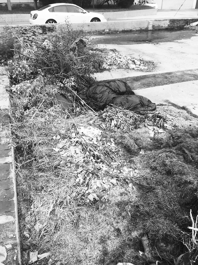 成堆的碎砖,成袋的垃圾和枯树干堆在路上,渗出的水浑浊发臭,影响了