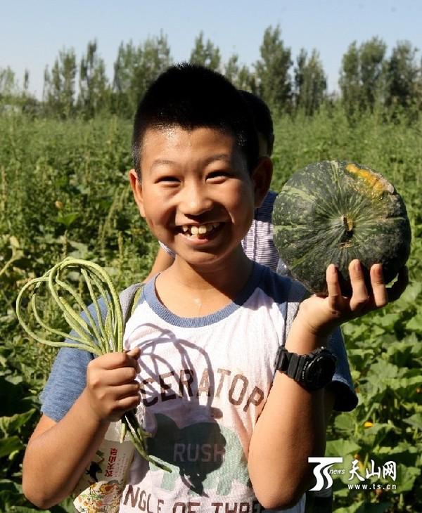 克拉玛依油娃小学度暑假|小学|小学生回龙山田野图片