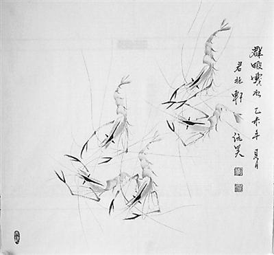 虾手绘铅笔图片
