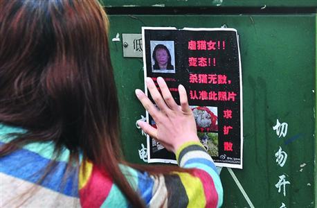 香港美女六肖图纸2019