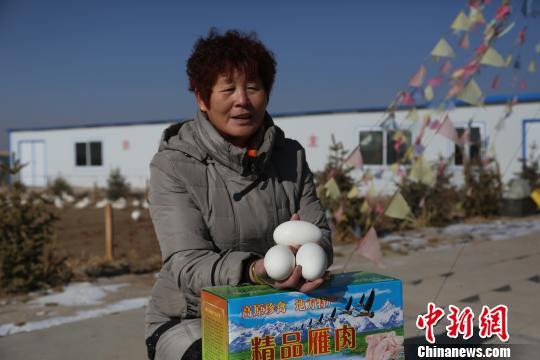"""图为""""牧""""雁人李中亭的创业伙伴展示雁蛋。 胡友军 摄"""