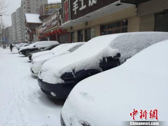 2月13日,辽宁迎来猴年首场强降雪。 宫旭 摄