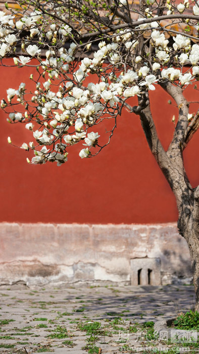 诗歌春天来了幼儿园大班课件图片