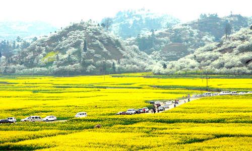 美景.景区布依风情特色浓郁,是黔中集奇山秀水、田园风光、民族