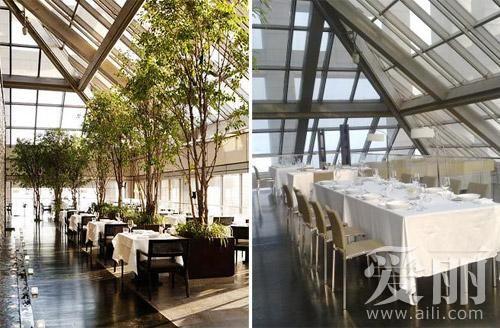 在北京餐厅 享受阳光灿烂的日子