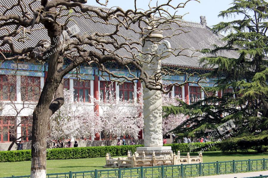 高清:北京大学2012年高招校园开放日