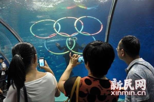 """海洋馆举办""""""""动物奥运会"""