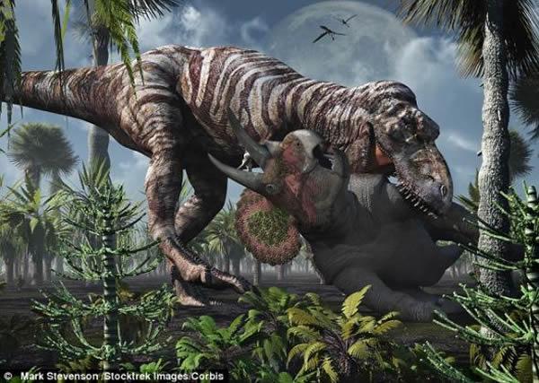 齿痕揭示霸王龙凶残猎食习性