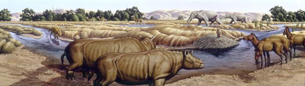 化石显示环境变化致巴基斯坦北部动物大量灭绝