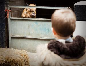 人兽杂交动物将变为现实 伦理争议加剧(图) - 钟儿丫 - 响铃垭人