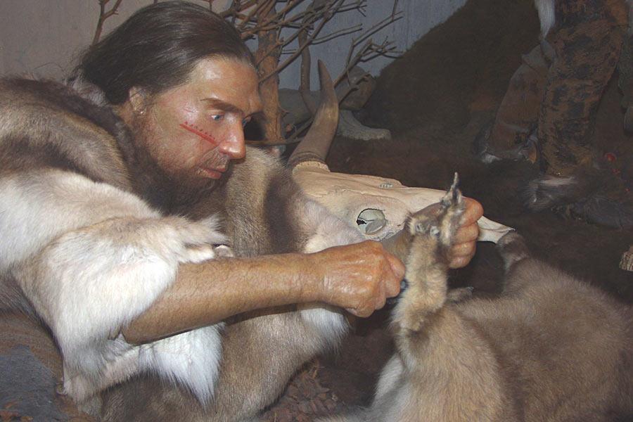 尼安德特人会沿着海岸搜寻食物,他们有固定的狩猎营,法国的容扎克尼安德特人石洞遗址便是其中的一处。他们甚至可能已经掌握了驯鹿迁徙规律,在适当的时间守在容扎克的狩猎点附近,等待大群驯鹿经过。