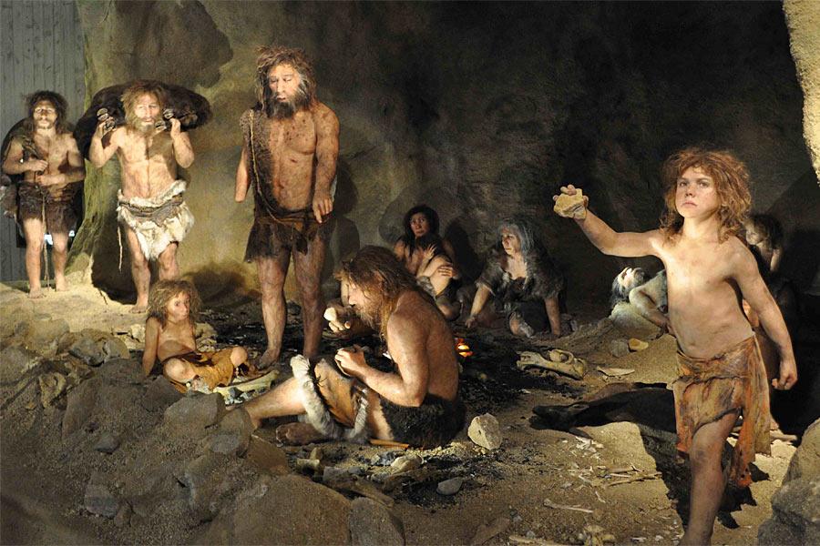 意大利西北部坍塌的岩石避难所Riparo Bombrini考古发现,尼安德特人的洞穴顶层包含动物残骸,用于保存被屠宰的动物。中层是睡觉区域,底层用于短暂的停留。这说明尼安德特人生活井然有序,居住空间干净整齐。他们还会用羽毛装饰自己。