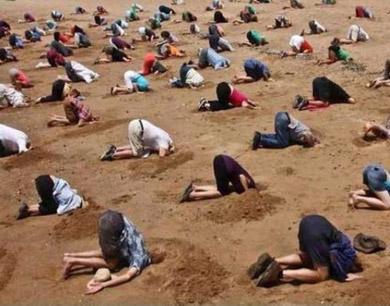 澳大利亚数十人头埋沙中 讥讽总理对气候变化态度