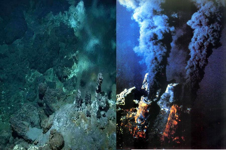 """盘点那些你不知道的深海""""超级生命""""_科技频道_凤凰网"""