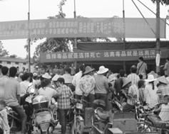 """海南省创建""""无毒村庄""""活动于2013年9月28日启动"""