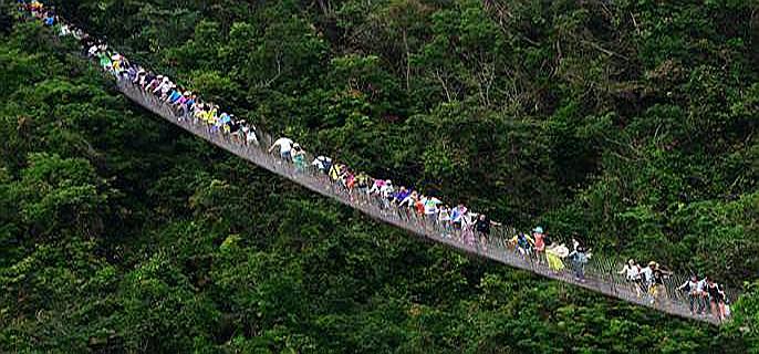 【原创】亚龙湾热带天堂森林公园 随拍 - 白云 - 善待自我 尊严活着 老有所乐