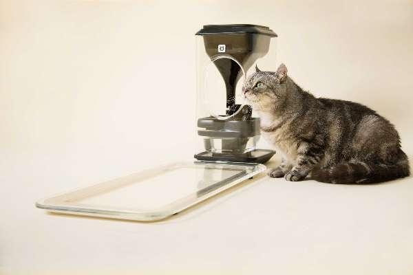 猫脸识别喂食器Muchi:猫的健康比硬件更重要|喂