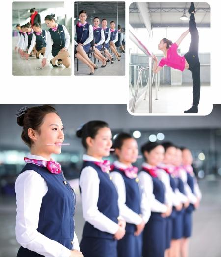 航空安全员招聘
