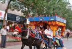 """新疆滨沙之城吐鲁番 毛驴""""的士""""成风景"""