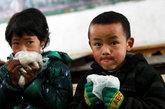 【四川山区贫困生饿肚子上学】于是,少数学生会用塑料袋捎上家里的隔夜饭在中午充饥,而大多数家庭贫困的学生一天只能吃上早晚两顿。对于该校500多位学生来说,能吃上一顿热气腾腾的午饭已成为他们最大的期盼。
