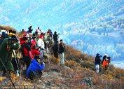 新疆喀纳斯迷人秋景 - xjh019(汉江石) - 汉江石的博客