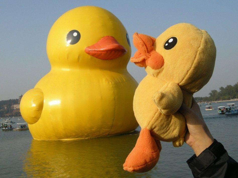 北京颐和园大黄鸭 - 斯蒂美智--艾瑞娜 - guohuaiping2008的博客