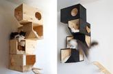 设计感的猫箱(实习编辑:石君兰)